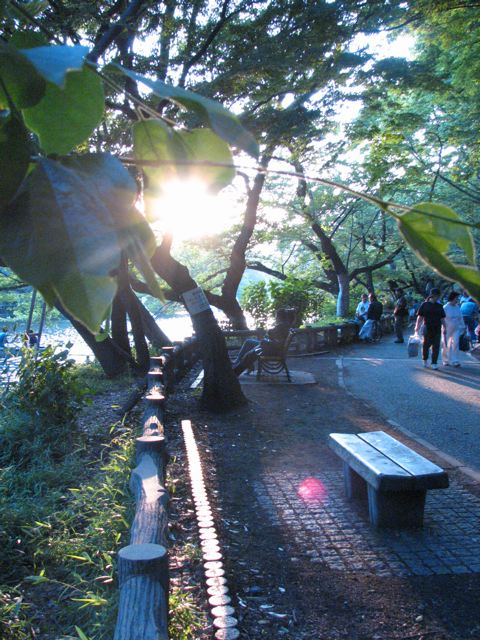 Sun sets on Inokashira Koen::